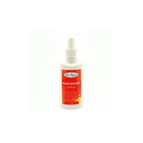 Panthenol spray 110ml Dr.Popov