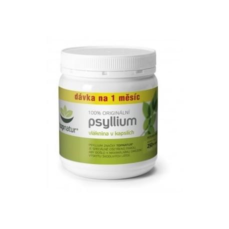 Psyllium kapsle 100ks ASP Topnatur